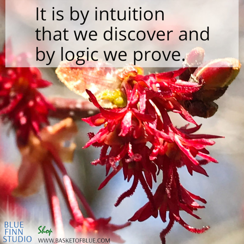 it is by intuition that we discover and by logic we prove