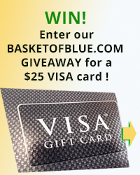 I'm giving out a visa gift card - enter to win